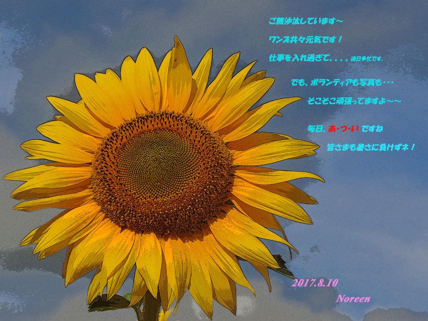 d0069235_00234504.jpg