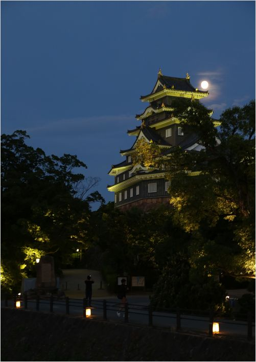 岡山城_a0256349_10161497.jpg