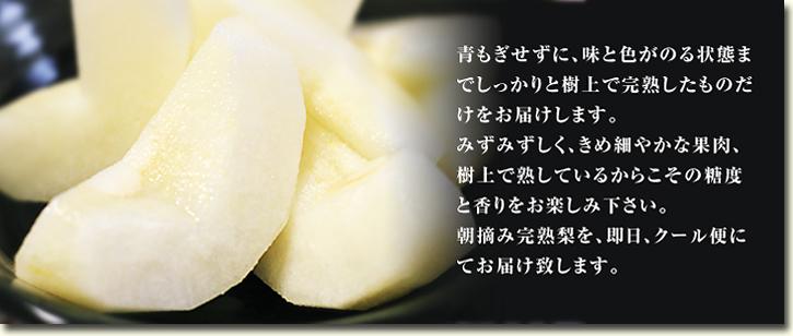 熊本梨 平成30年度の『豊水(ほうすい)』は8月24日(金)より出荷スタート!! 初回発送分はすでに完売です!_a0254656_17101487.jpg