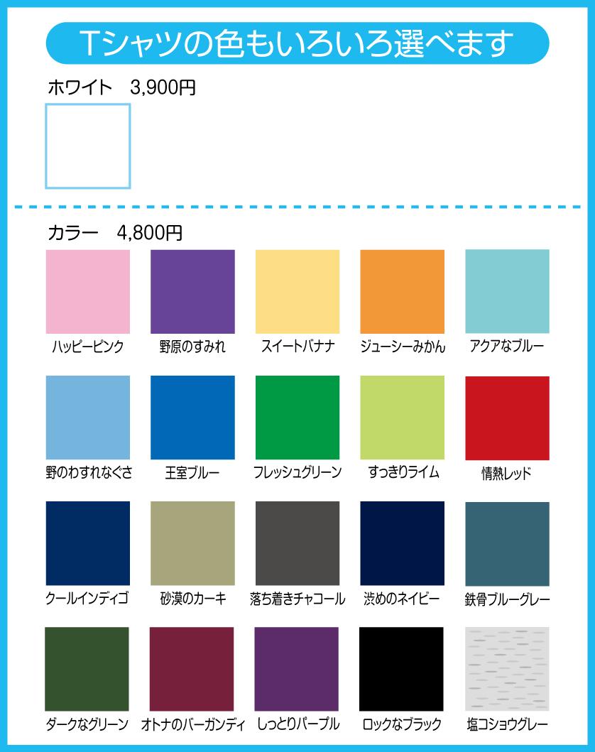 オリジナルTシャツ_e0177561_2130755.jpg
