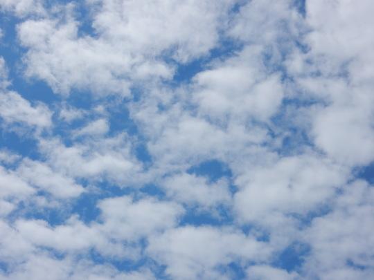 '17,8,10(木)今日は秋のような涼しさ!_f0060461_10480425.jpg