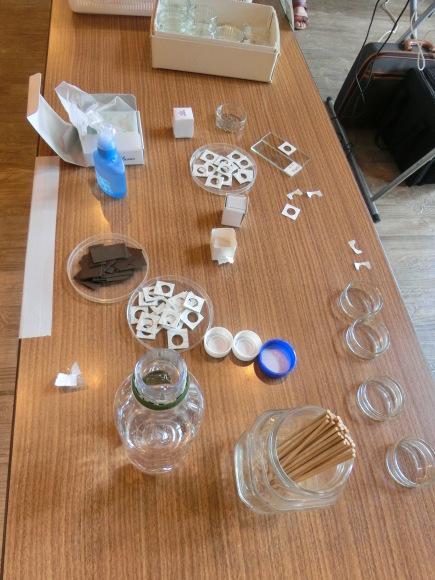 夏休みこども自然教室「砂の中のお宝さがし」開催しました_f0354435_15480286.jpg
