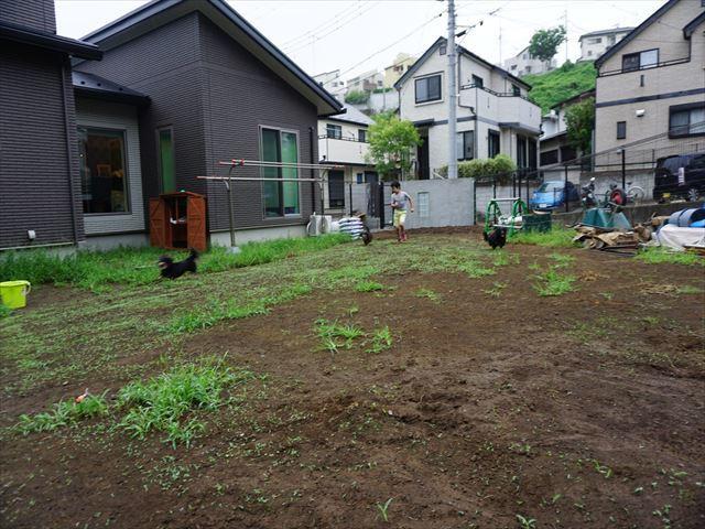 d0336846_20111077.jpg