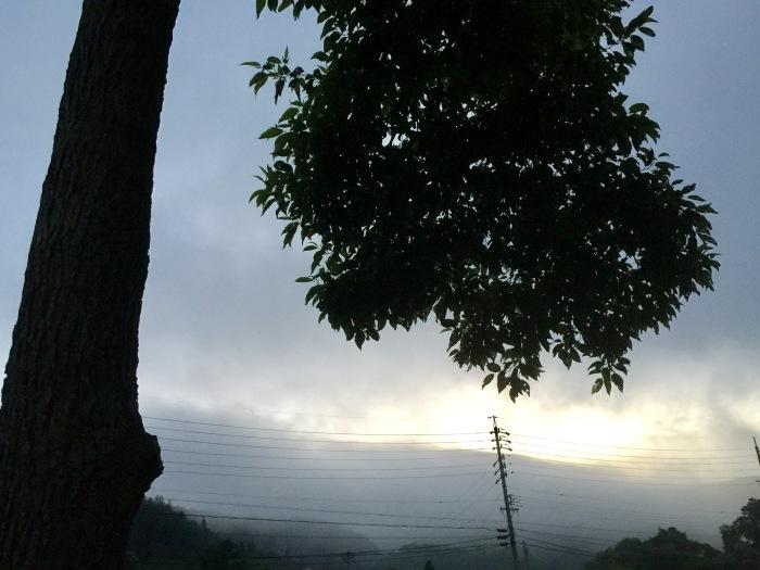 d0105967_20125180.jpg
