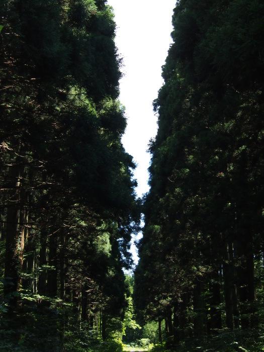 盛岡/仙台旅行_a0182722_10005583.jpg