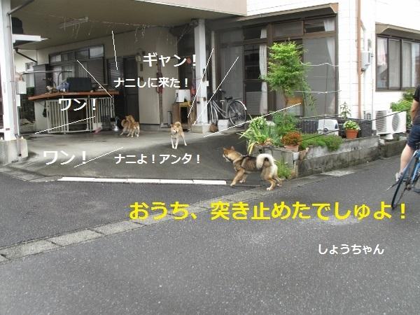 f0143123_09112184.jpg