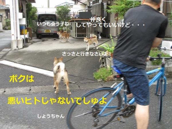 f0143123_09121903.jpg