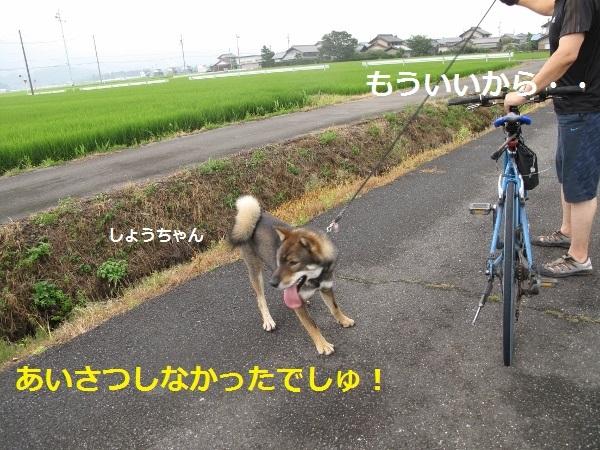 f0143123_09193981.jpg