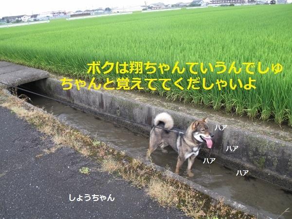 f0143123_09201222.jpg