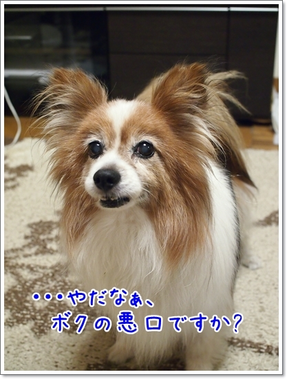 d0013149_00252867.jpg