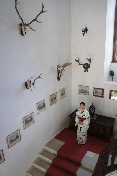 ウィーン北部古城に眠る 伊万里コレクションを訪ねて_d0334837_19544339.jpg