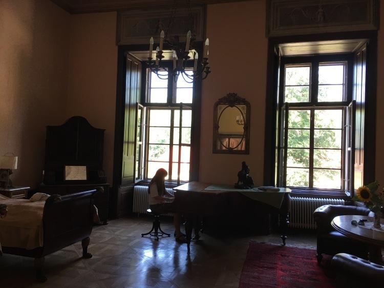 ウィーン北部古城に眠る 伊万里コレクションを訪ねて_d0334837_22283466.jpg