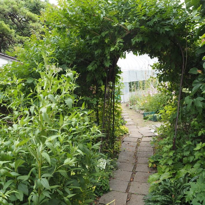 秘密の花園風_a0292194_1356226.jpg