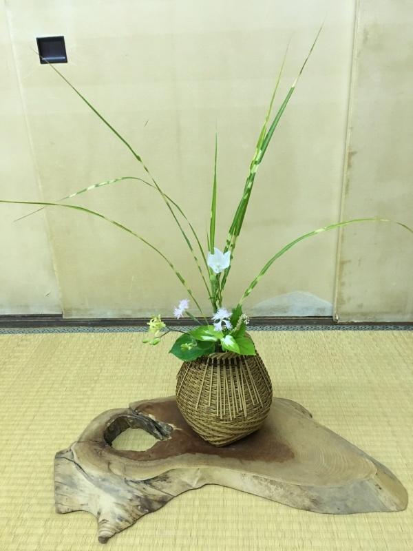 お茶花のお稽古_c0195496_21274412.jpeg