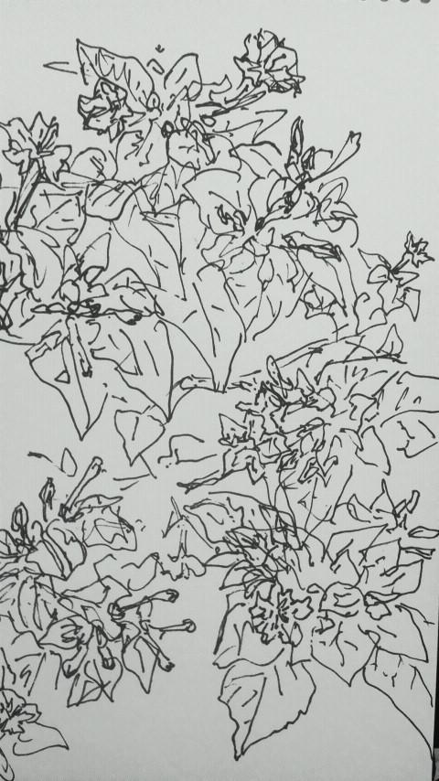 f0352601_195271.jpg