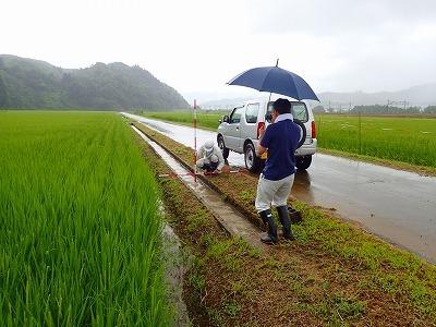 多面的機能支払事業 農地維持活動の現地確認調査が行われました_c0336902_09093863.jpg