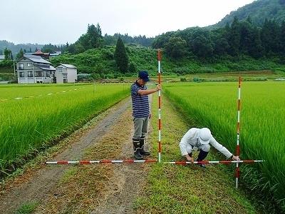 多面的機能支払事業 農地維持活動の現地確認調査が行われました_c0336902_09094465.jpg