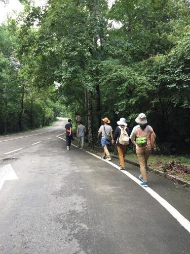 中国武夷山に行ってきました_d0293004_17290269.jpg