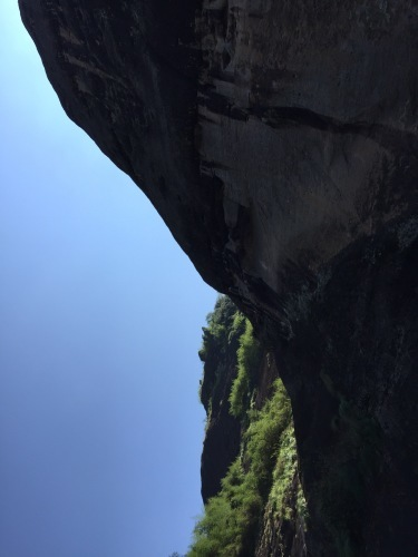 中国武夷山に行ってきました_d0293004_21375075.jpg