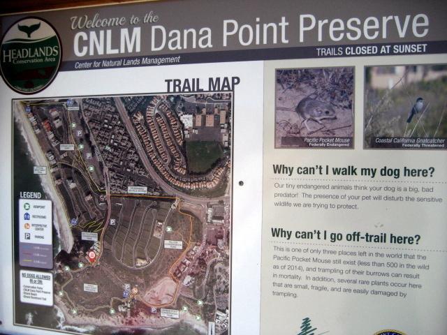 Dana Point Becah Trail_f0300716_08342249.jpg