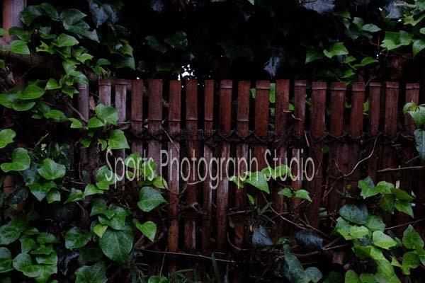 d0256494_06034356.jpg