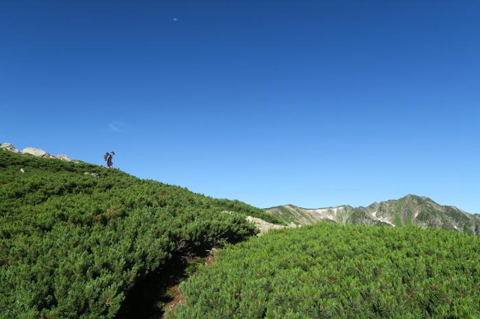 2017.8.11-13 夏の北アルプスハイク3days day3(三俣山荘-高瀬ダム)_b0219778_19575839.jpg
