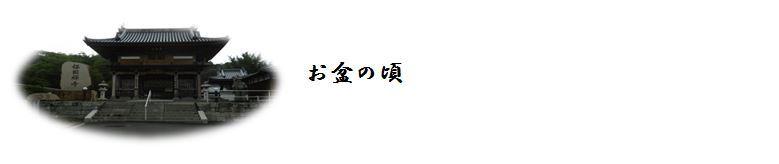 d0254522_19521321.jpg