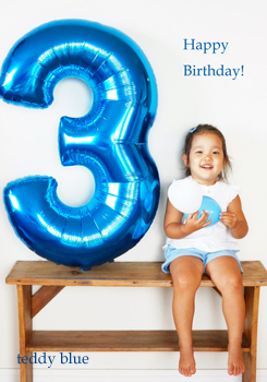 Happy 3rd Birthday!  3歳になりました!_e0253364_20281545.jpg