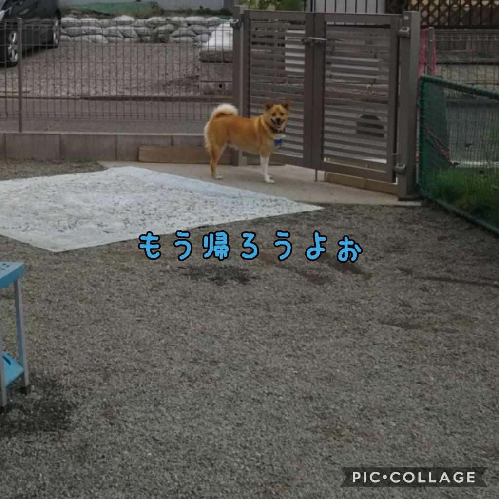 f0095265_08480319.jpg