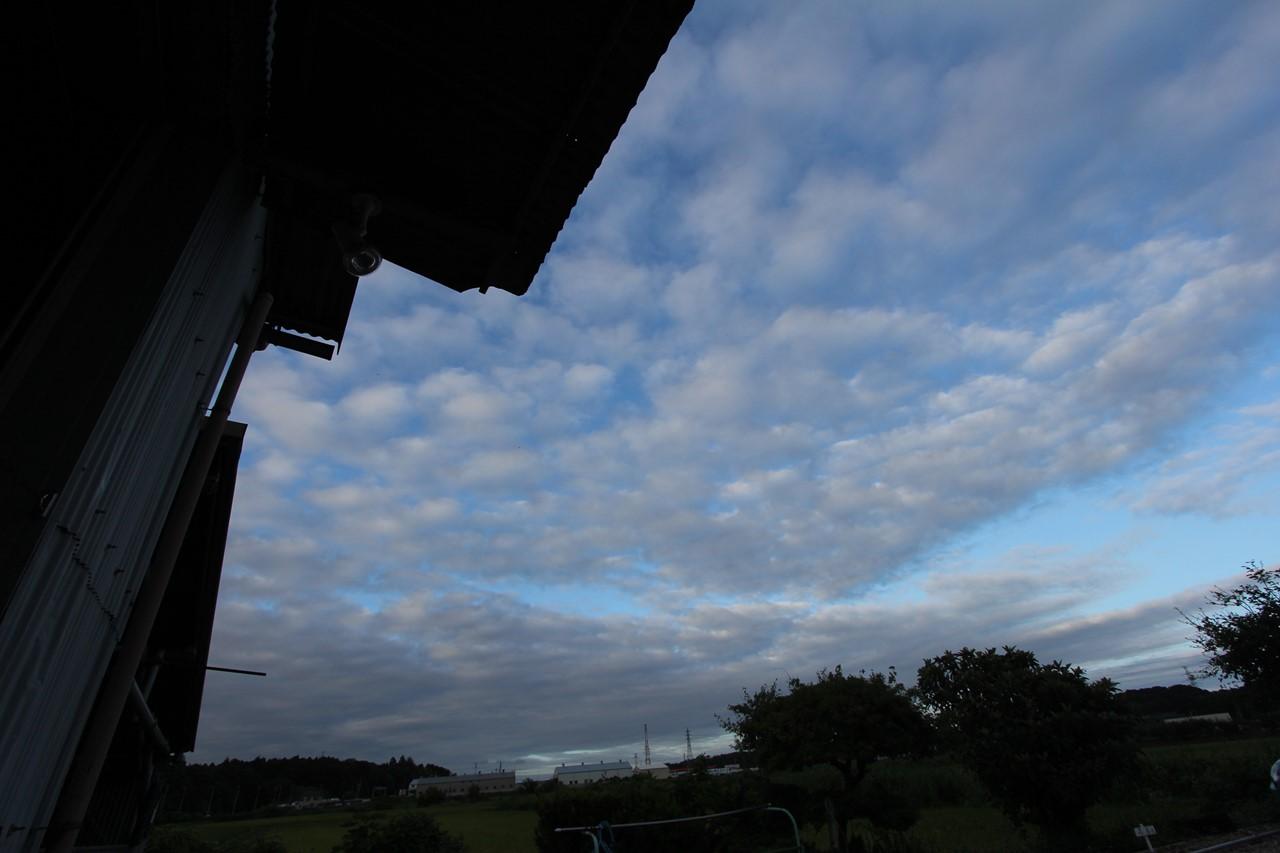 雨が降ってないけど夏か?_f0225627_20553552.jpg