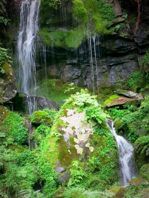 嬬恋・たまだれの滝で涼を感じる♪_f0236260_23384482.jpg
