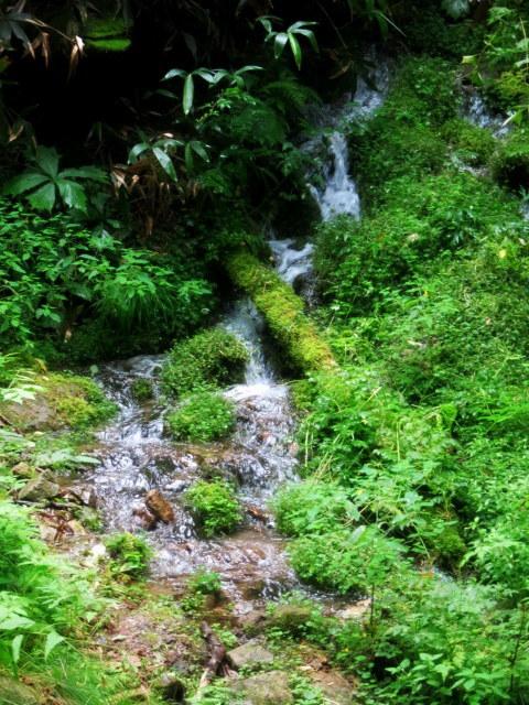 嬬恋・たまだれの滝で涼を感じる♪_f0236260_23403182.jpg