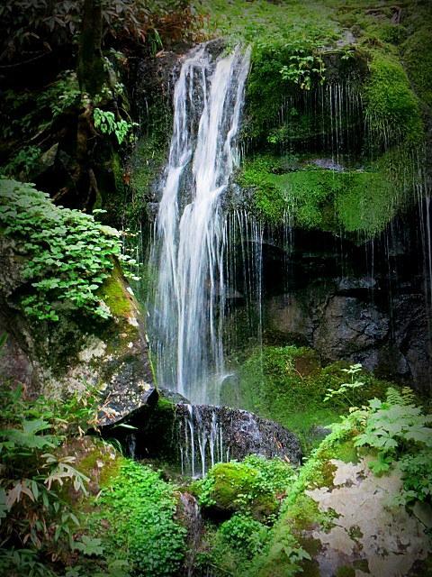 嬬恋・たまだれの滝で涼を感じる♪_f0236260_23435167.jpg