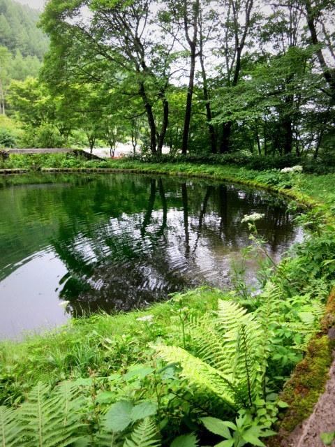 嬬恋・たまだれの滝で涼を感じる♪_f0236260_23444570.jpg