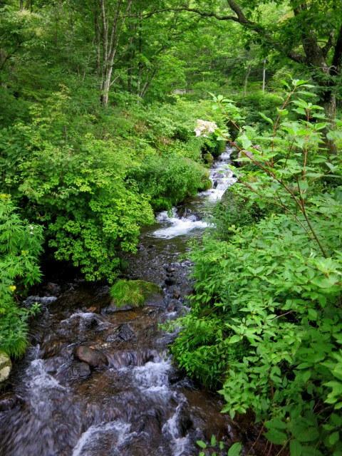 嬬恋・たまだれの滝で涼を感じる♪_f0236260_23471557.jpg