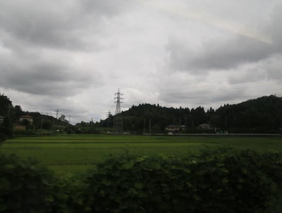 E259系 車窓より・_d0202264_20581789.jpg