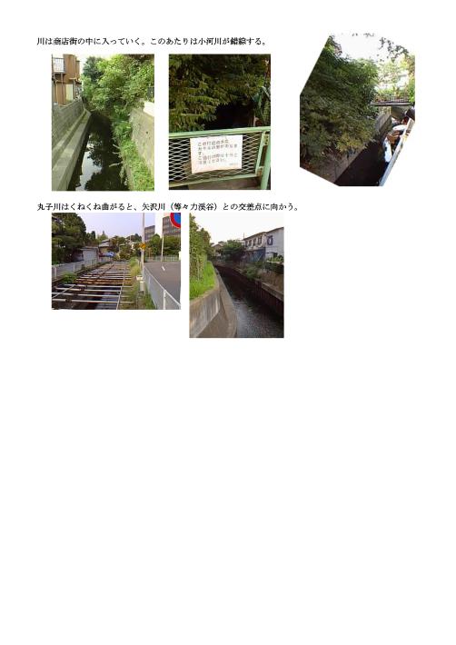 b0116271_15563666.jpg