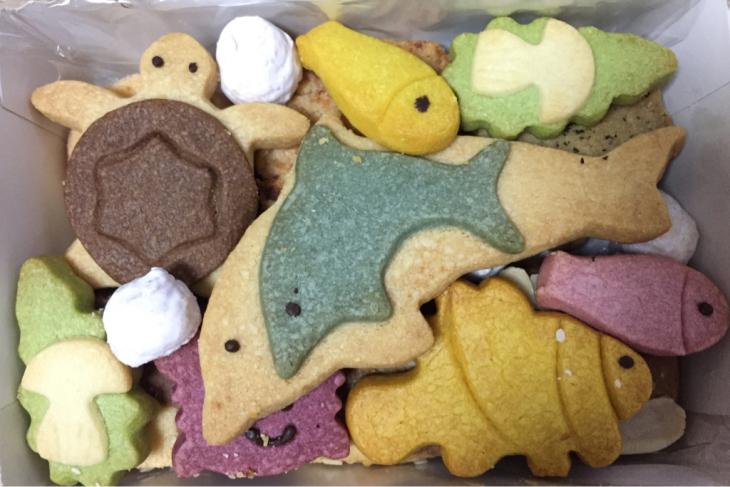 海のクッキー♡_f0144003_19103735.jpg