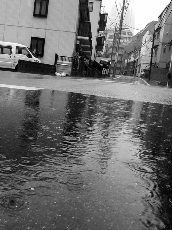 雨つづきの夏_a0003650_21181121.jpg