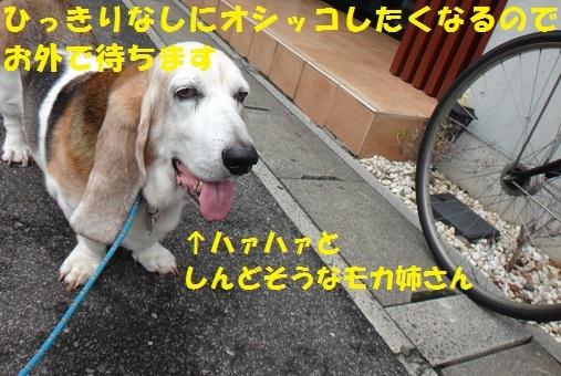 f0121712_07000198.jpg