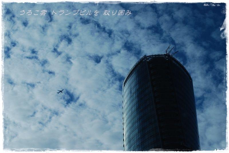 うろこ雲_d0037232_09150567.jpg