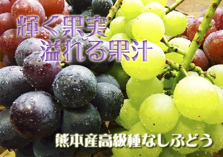 熊本ぶどう 社方園 第12回ぶどう祭り 前編_a0254656_20252081.jpg