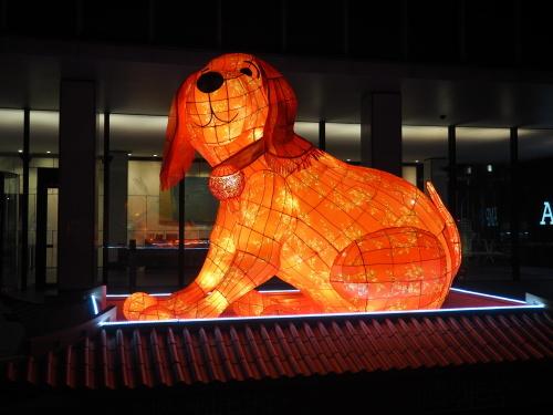 シドニーの名所が真っ赤に染まる、チャイニーズニューイヤー_c0351060_15192594.jpg