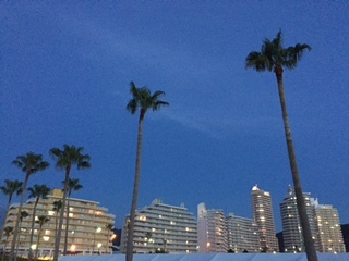 やっぱ ここの花火が一番好き~♪ in 和歌山マリーナシティ_e0123286_19202051.jpg