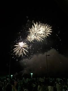 やっぱ ここの花火が一番好き~♪ in 和歌山マリーナシティ_e0123286_19263824.jpg