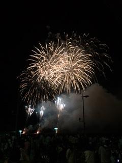 やっぱ ここの花火が一番好き~♪ in 和歌山マリーナシティ_e0123286_19270448.jpg