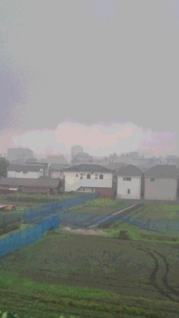 ひどい天気でした_d0155439_23585471.jpg