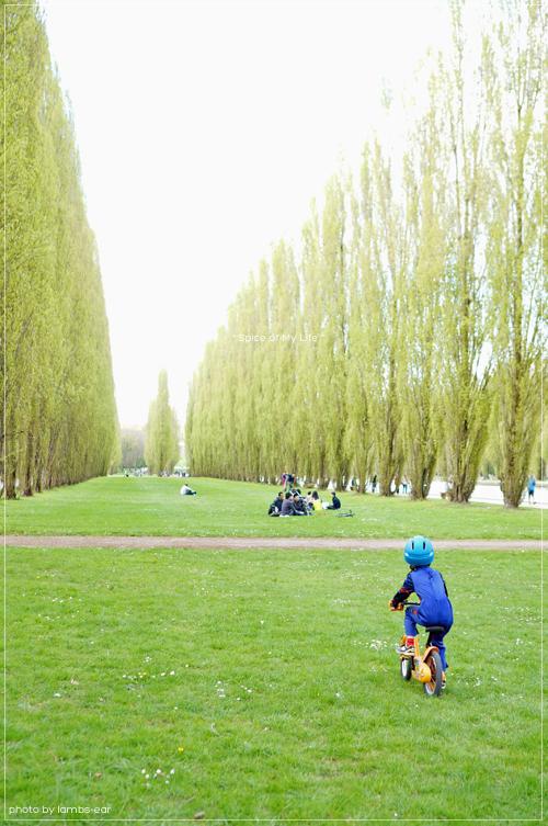 桜のソー公園*_f0151946_1822143.jpg