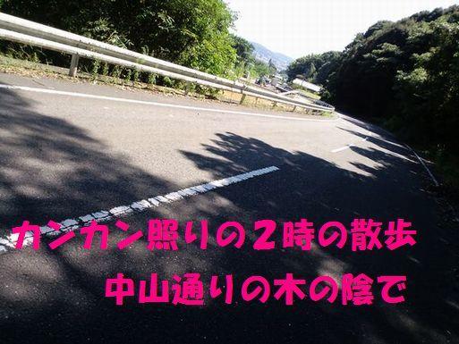 c0025171_21570431.jpg