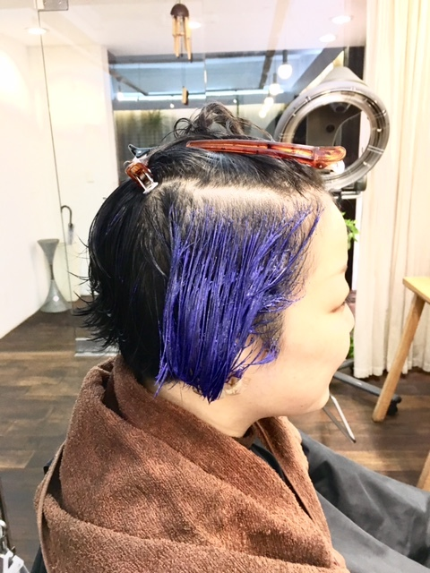 クールに青のインサイドカラー_d0224931_15425910.jpg